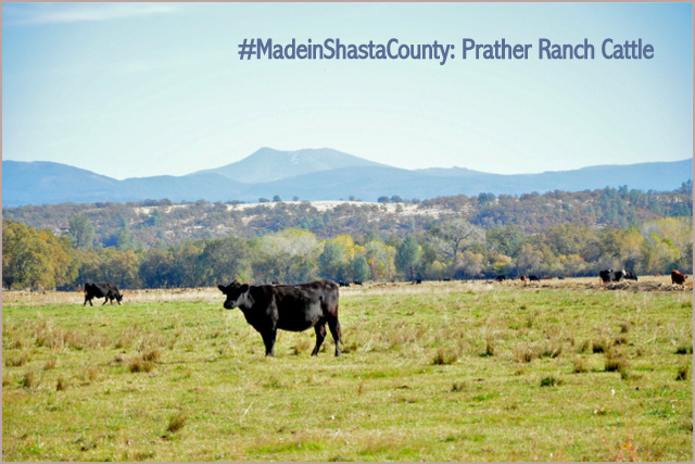Made in Shasta County – Part 23: Prather Ranch Beef